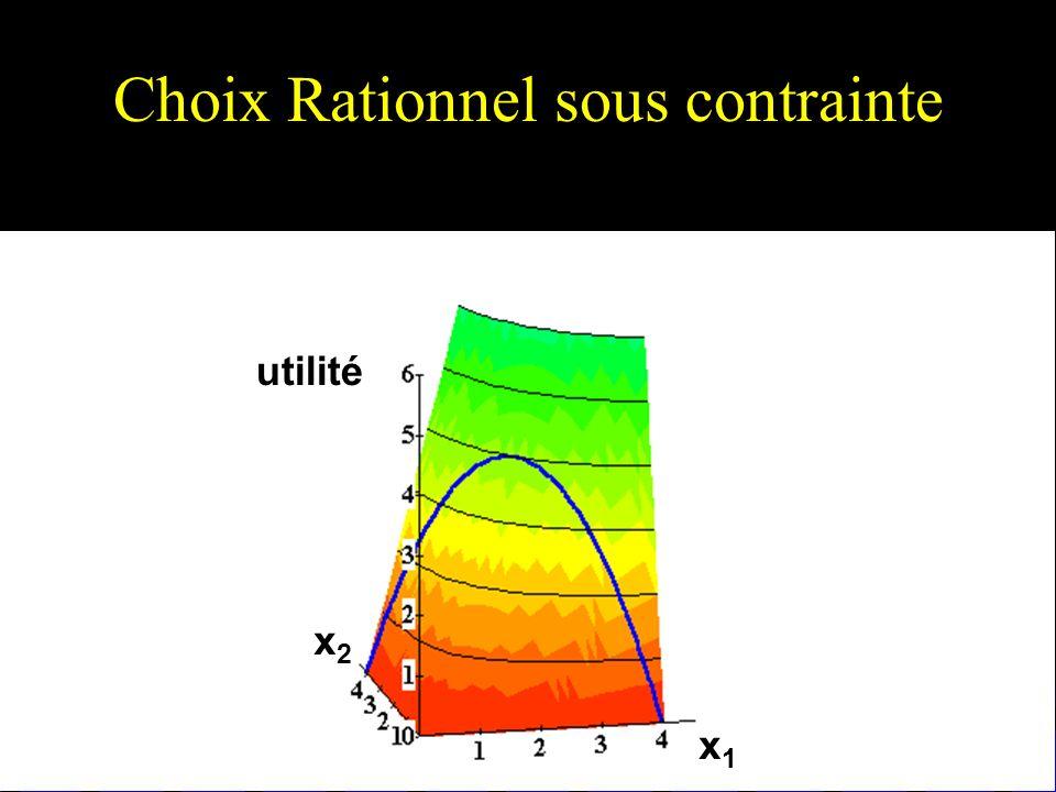 Choix Rationnel sous contrainte