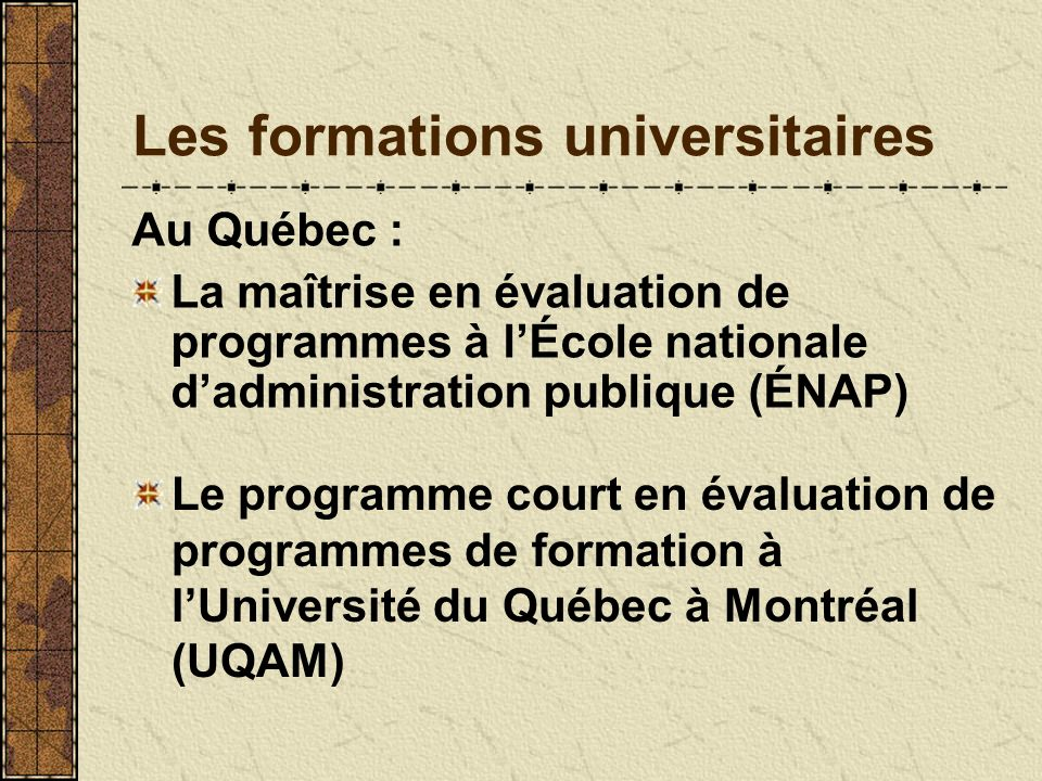 Les formations universitaires