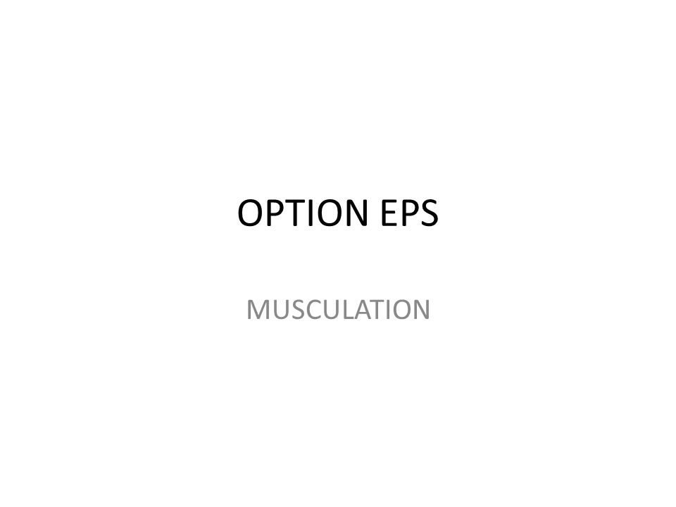 OPTION EPS MUSCULATION