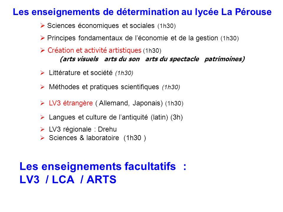 Les enseignements facultatifs : LV3 / LCA / ARTS