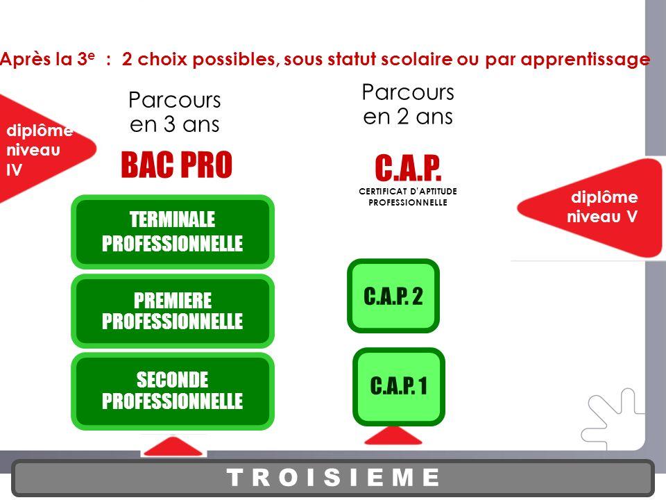 PARCOURS DE LA VOIE PROFESSIONNELLE CERTIFICAT D'APTITUDE