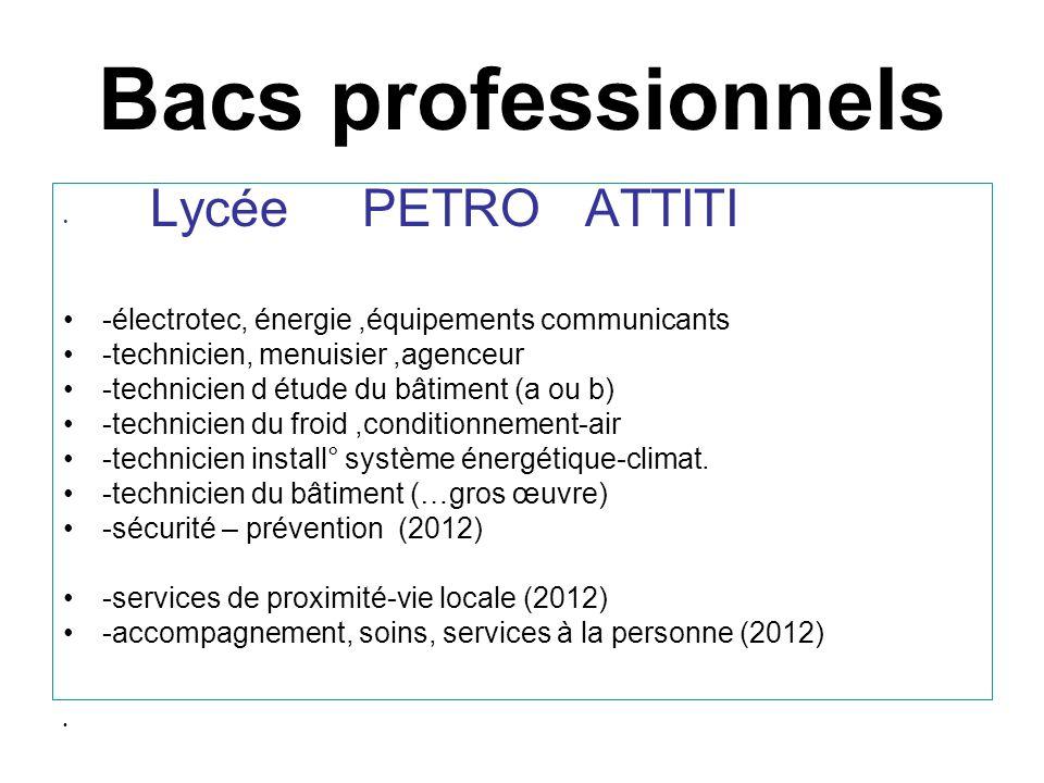 Bacs professionnels -électrotec, énergie ,équipements communicants