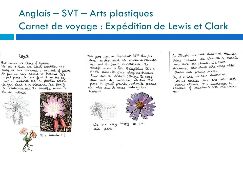 Anglais – SVT – Arts plastiques Carnet de voyage : Expédition de Lewis et Clark