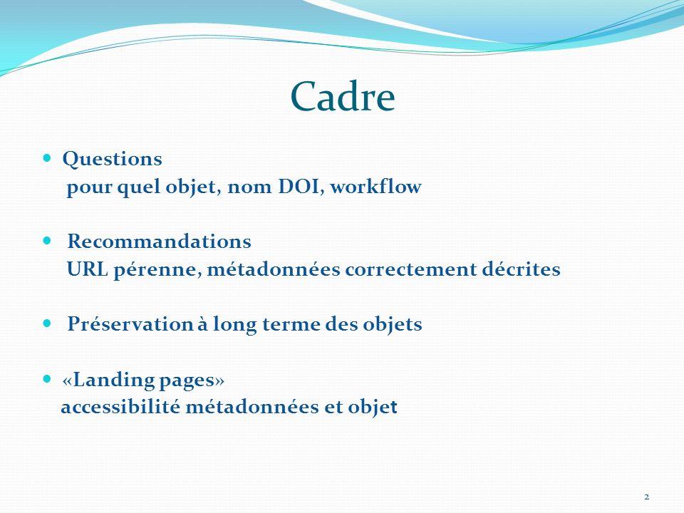 Cadre Questions pour quel objet, nom DOI, workflow Recommandations