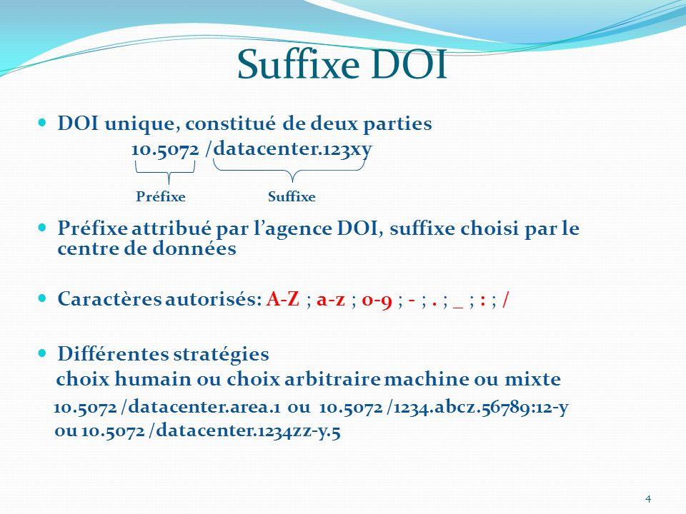 Suffixe DOI DOI unique, constitué de deux parties. 10.5072 /datacenter.123xy.