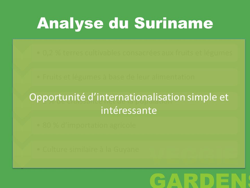 Opportunité d'internationalisation simple et intéressante