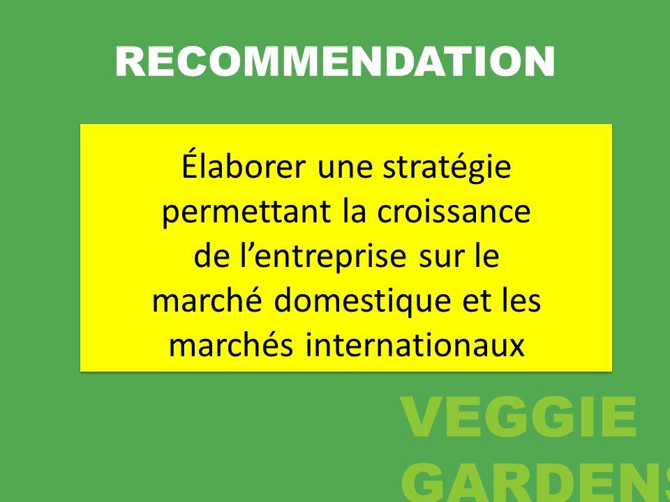 RECOMMENDATION Élaborer une stratégie permettant la croissance de l'entreprise sur le marché domestique et les marchés internationaux.