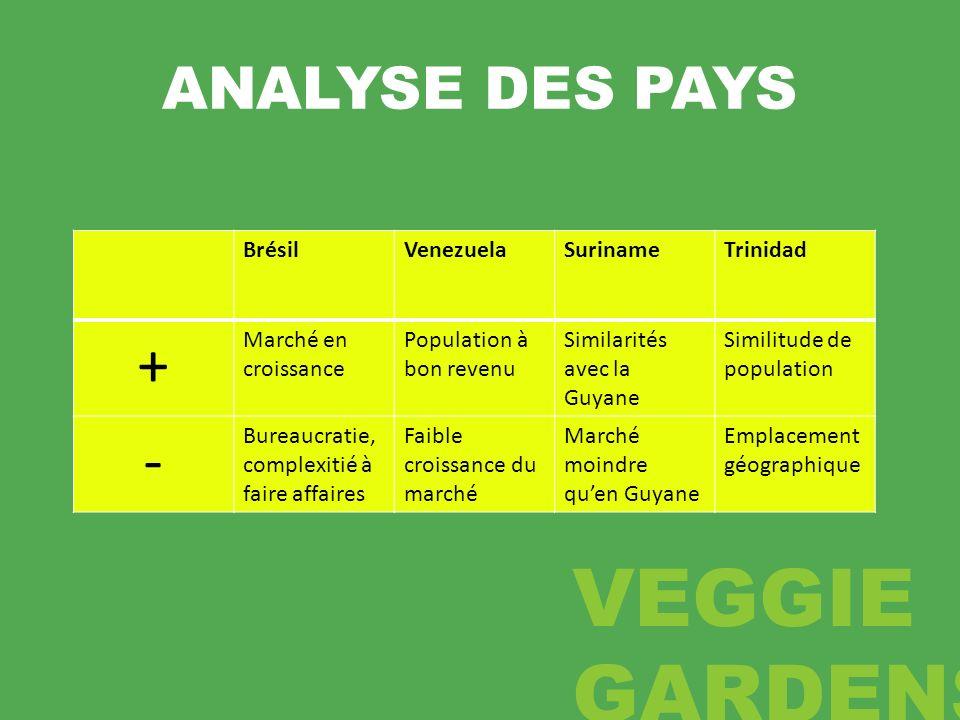 + - ANALYSE DES PAYS Brésil Venezuela Suriname Trinidad