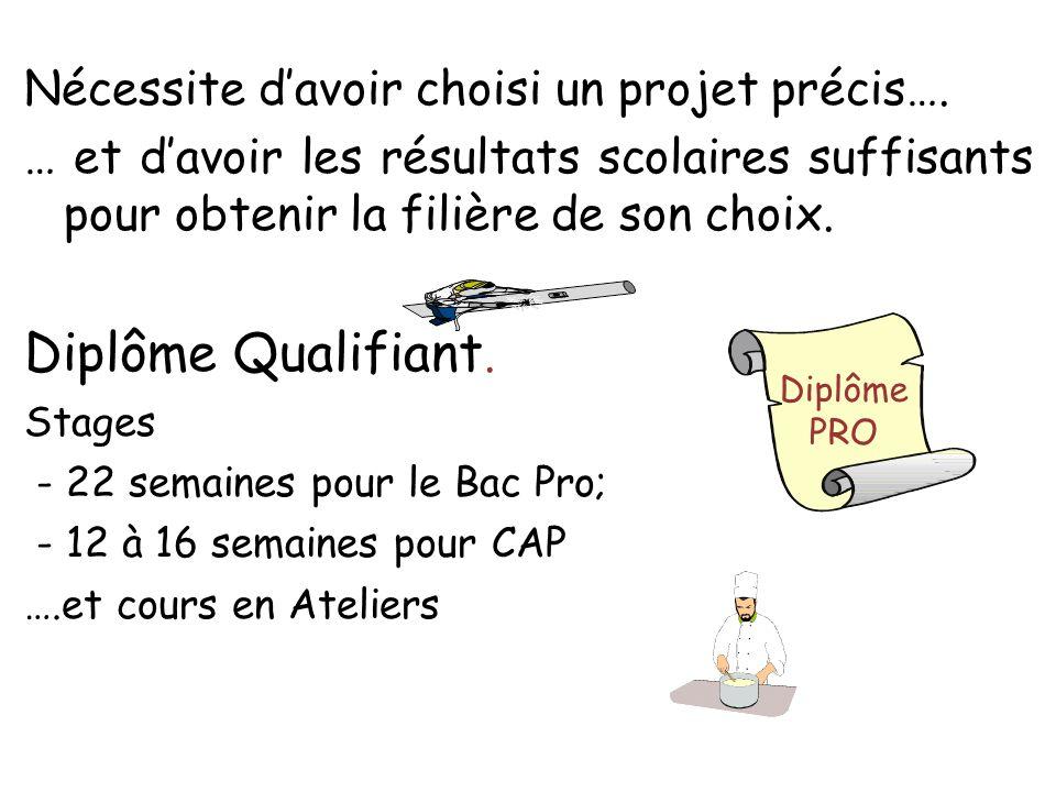 Diplôme Qualifiant. Nécessite d'avoir choisi un projet précis….