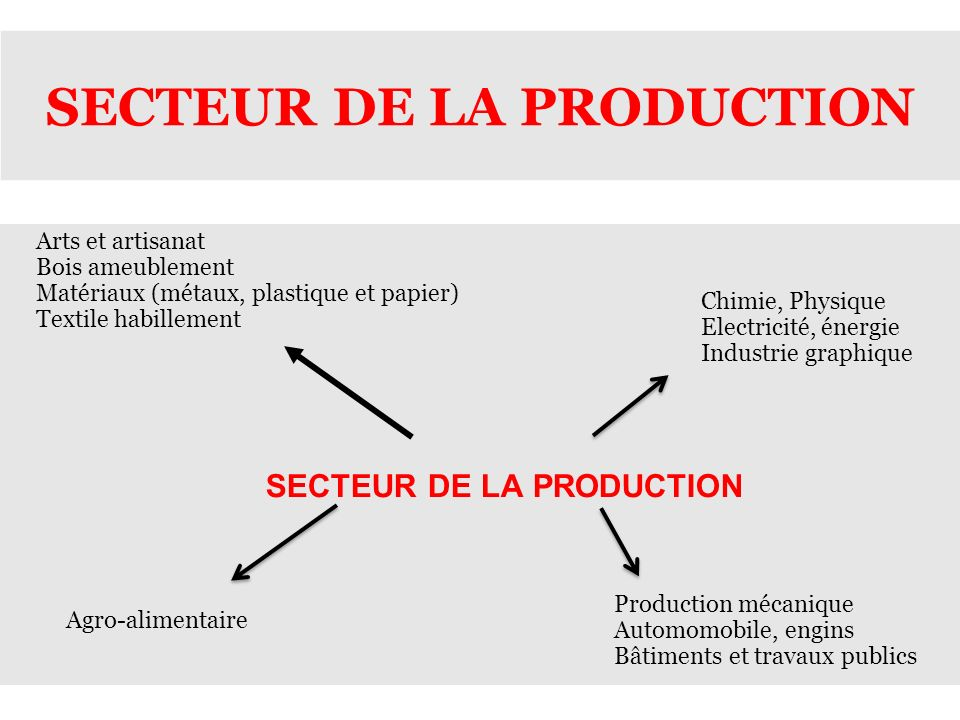 SECTEUR DE LA PRODUCTION
