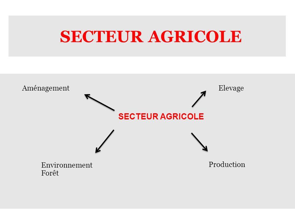 SECTEUR AGRICOLE Aménagement Elevage SECTEUR AGRICOLE Environnement