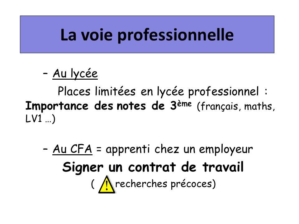 La voie professionnelle Signer un contrat de travail
