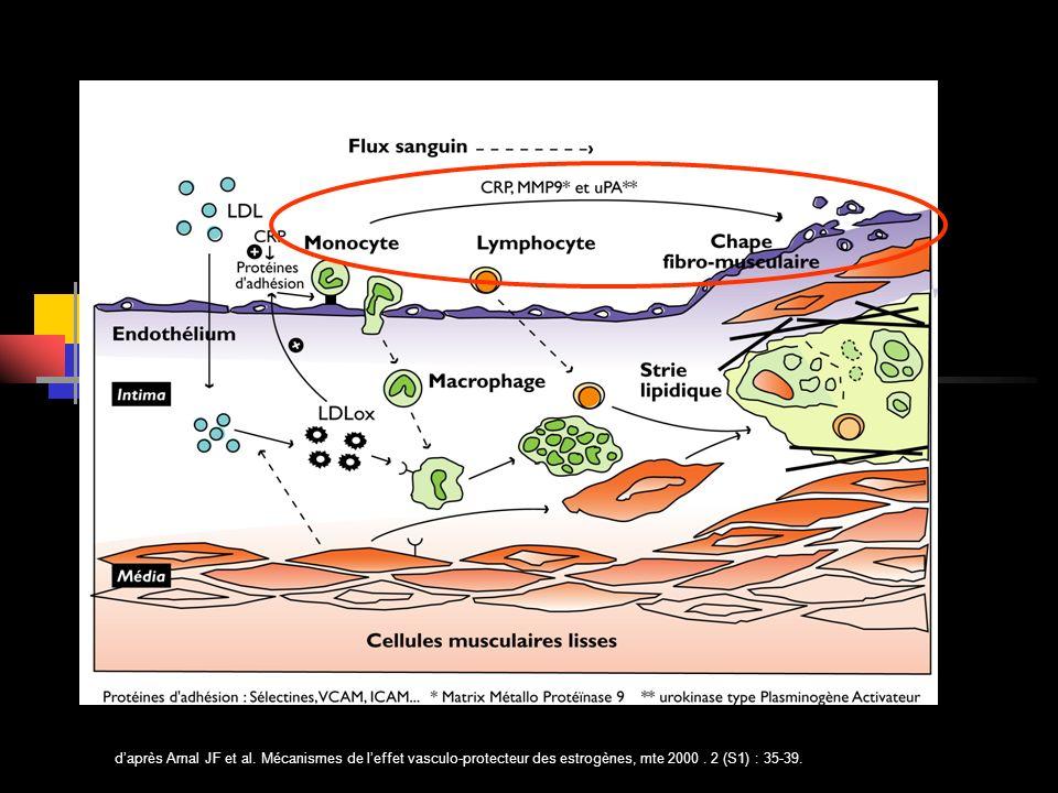 d'après Arnal JF et al. Mécanismes de l'effet vasculo-protecteur des estrogènes, mte 2000 .
