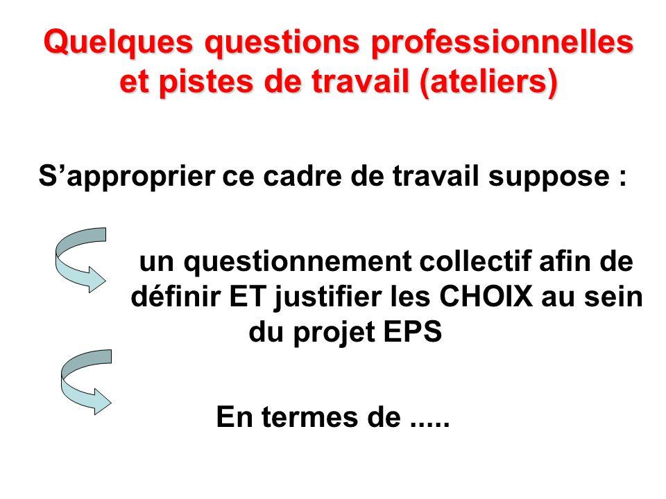 Quelques questions professionnelles et pistes de travail (ateliers)