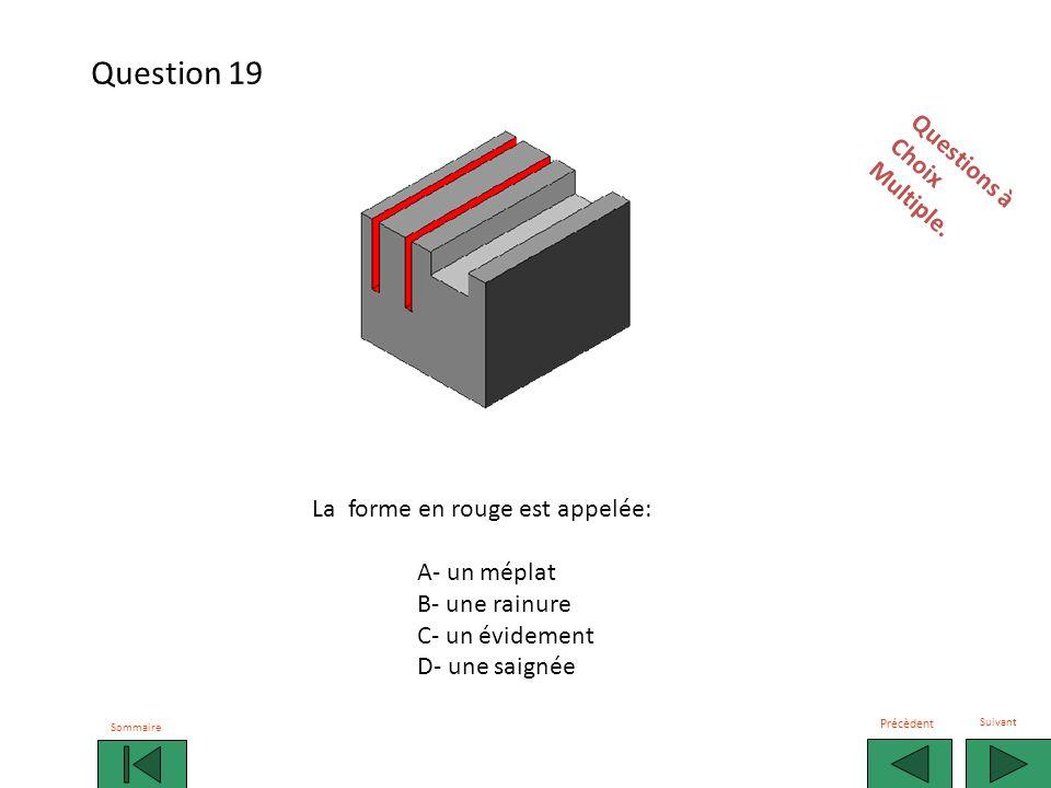 Question 19 Questions à Choix Multiple. La forme en rouge est appelée: