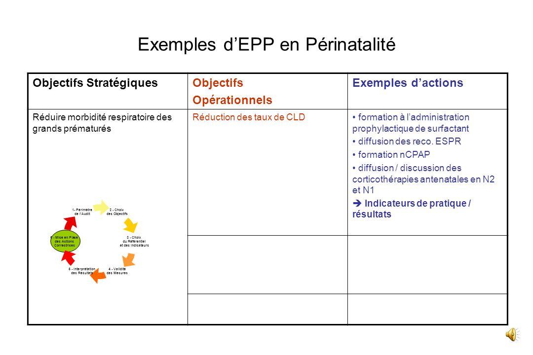 Exemples d'EPP en Périnatalité