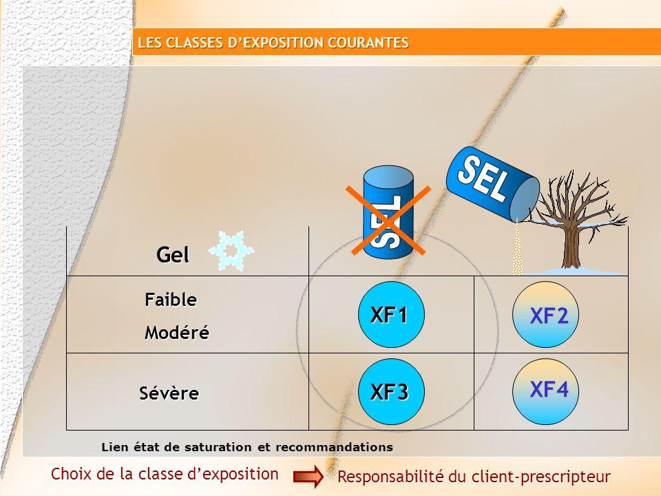 SEL SEL Gel XF1 XF2 XF4 XF3 Faible Modéré Sévère