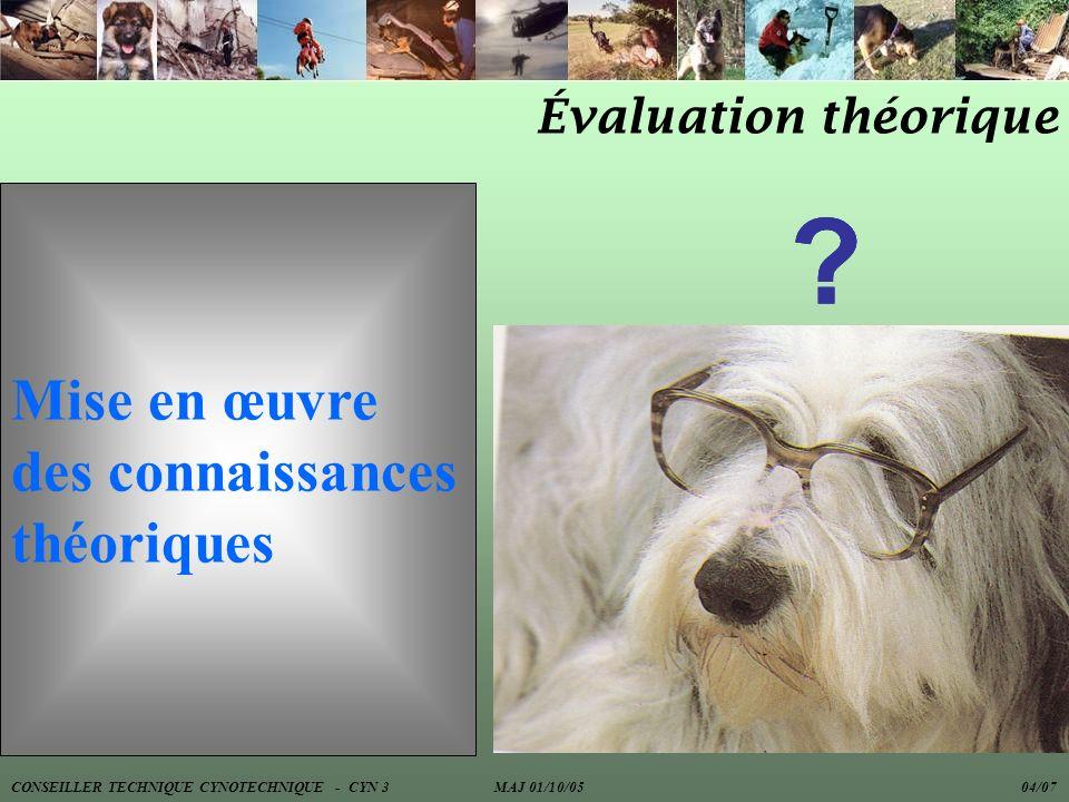 Mise en œuvre des connaissances théoriques Évaluation théorique