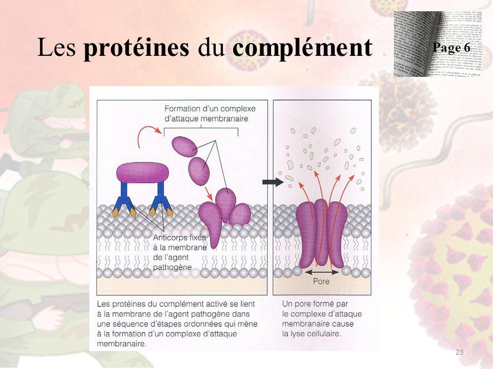 Les protéines du complément