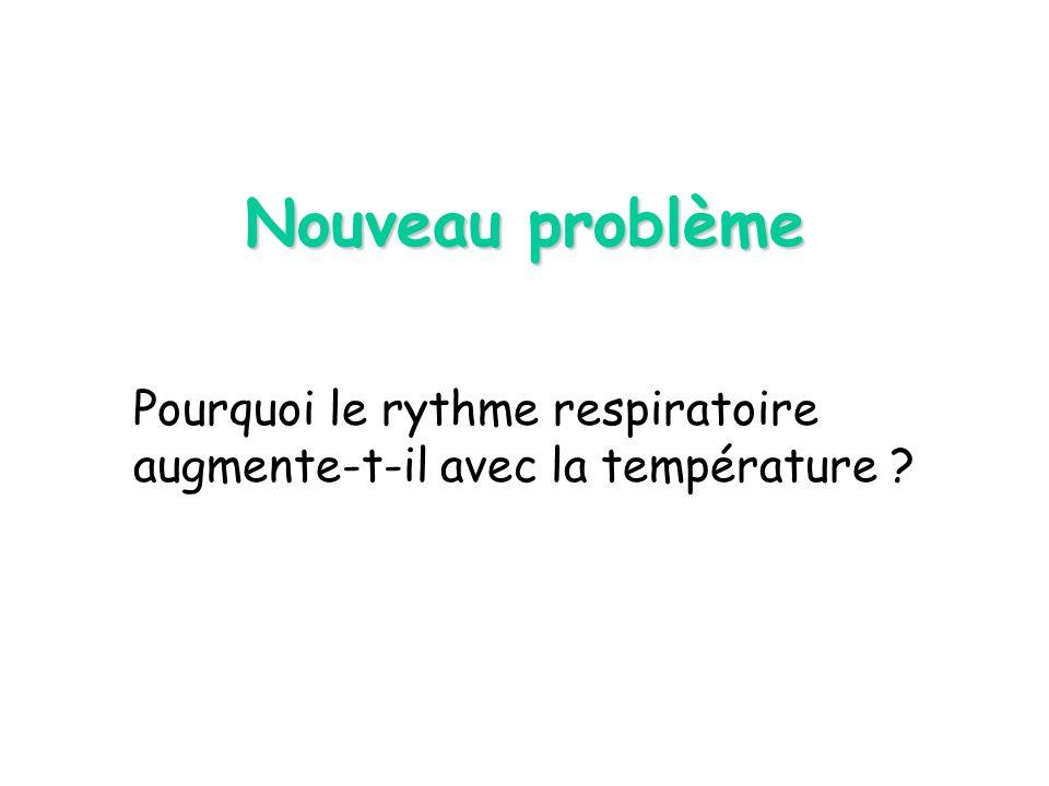 Pourquoi le rythme respiratoire augmente-t-il avec la température