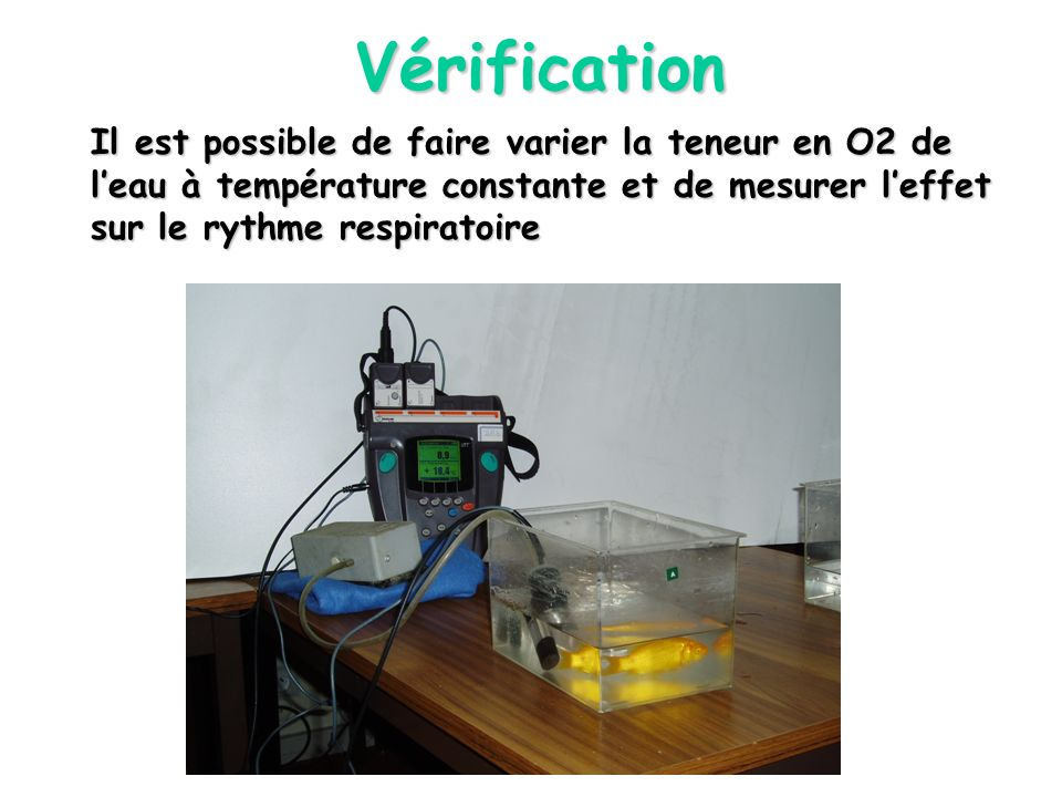 Vérification Il est possible de faire varier la teneur en O2 de l'eau à température constante et de mesurer l'effet sur le rythme respiratoire.