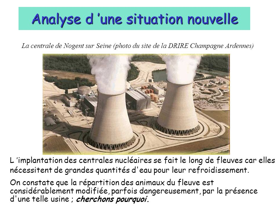 Analyse d 'une situation nouvelle