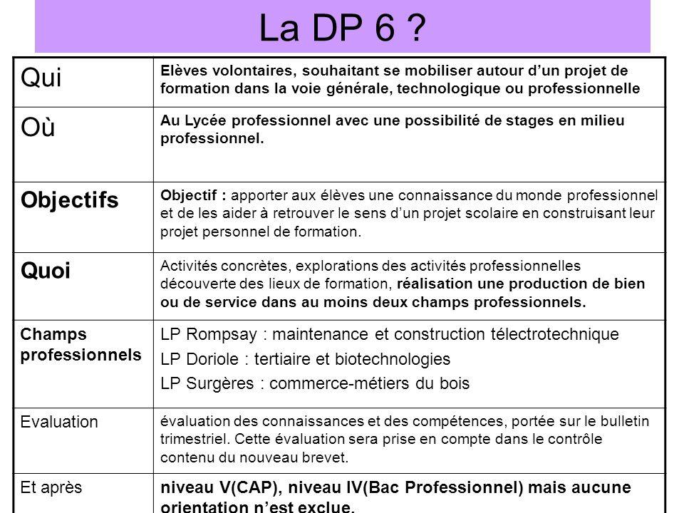 La DP 6 Qui Où Objectifs Quoi Champs professionnels