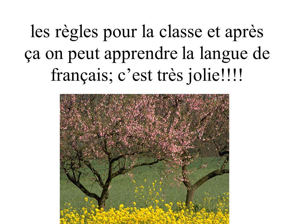 les règles pour la classe et après ça on peut apprendre la langue de français; c'est très jolie!!!!