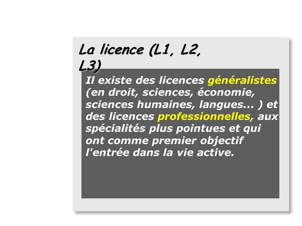 La licence (L1, L2, L3)