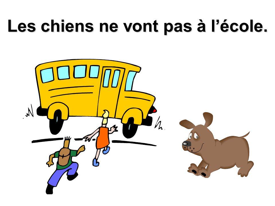 Les chiens ne vont pas à l'école.