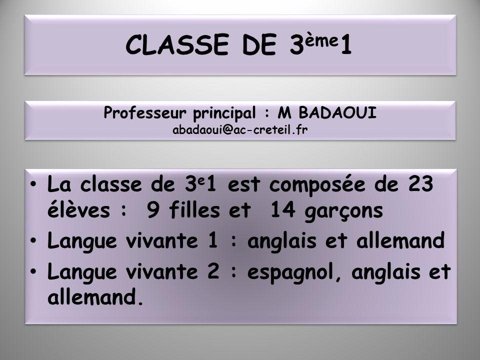 Professeur principal : M BADAOUI