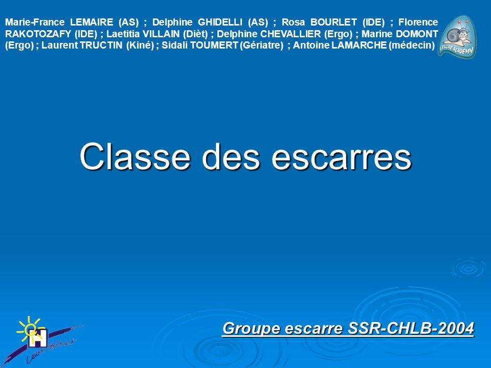 Groupe escarre SSR-CHLB-2004