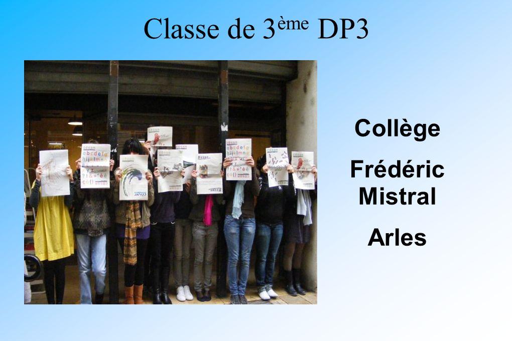 Classe de 3ème DP3 Collège Frédéric Mistral Arles