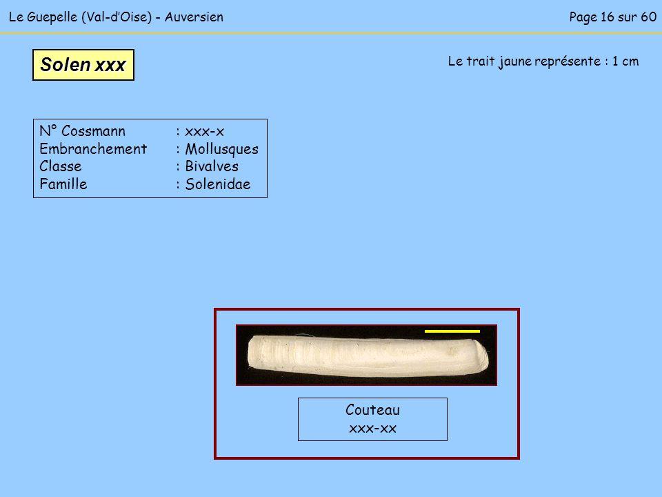 Le trait jaune représente : 1 cm