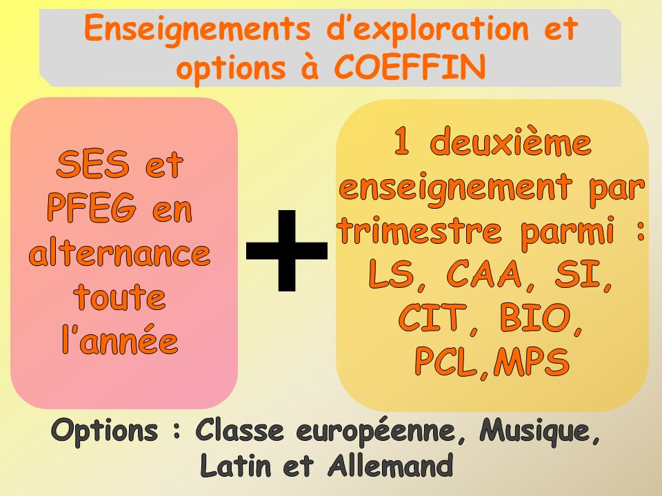 Enseignements d'exploration et options à COEFFIN
