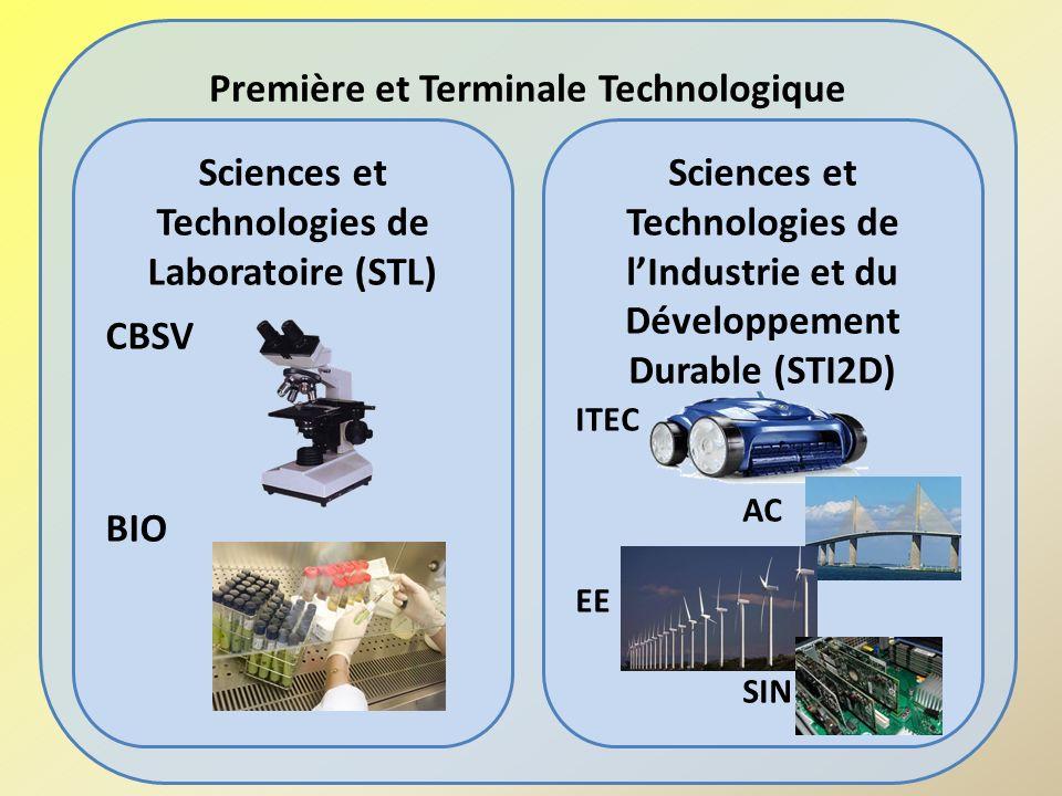 Première et Terminale Technologique