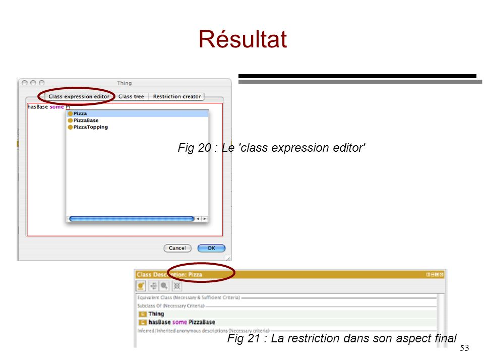 Résultat Fig 20 : Le class expression editor