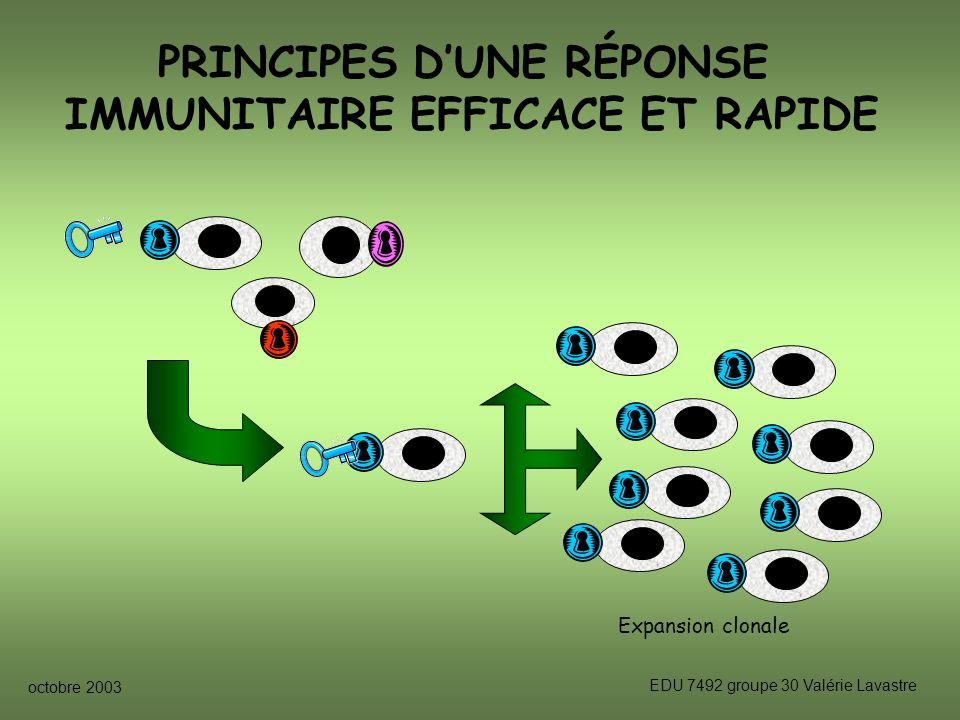 PRINCIPES D'UNE RÉPONSE IMMUNITAIRE EFFICACE ET RAPIDE
