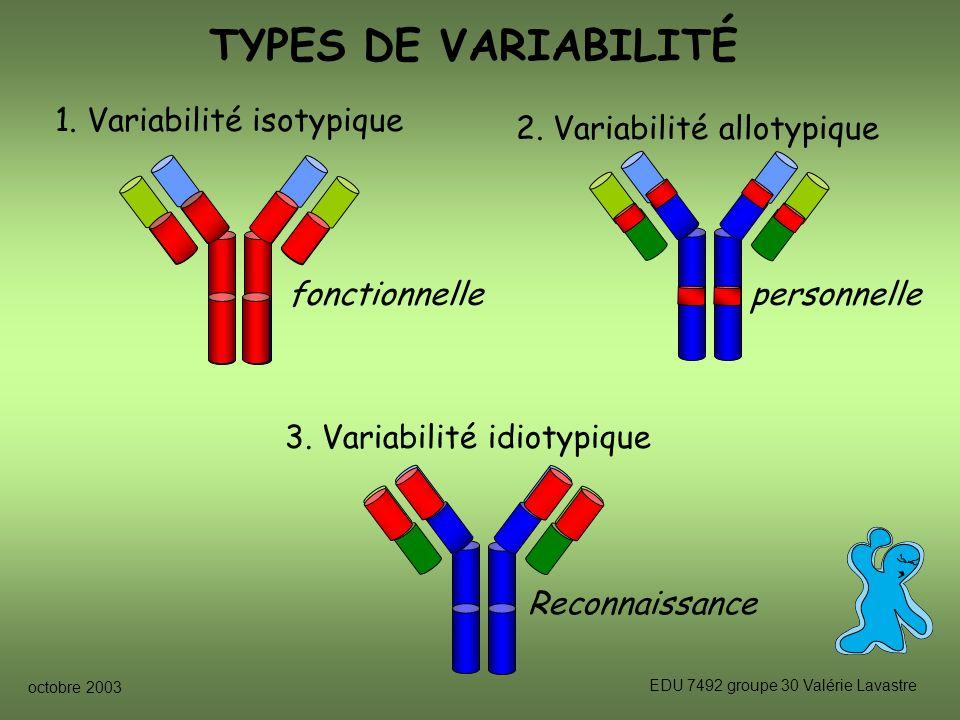 TYPES DE VARIABILITÉ 1. Variabilité isotypique fonctionnelle
