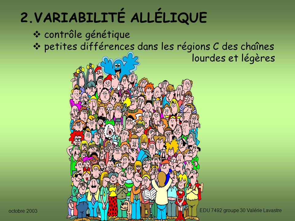 2.VARIABILITÉ ALLÉLIQUE