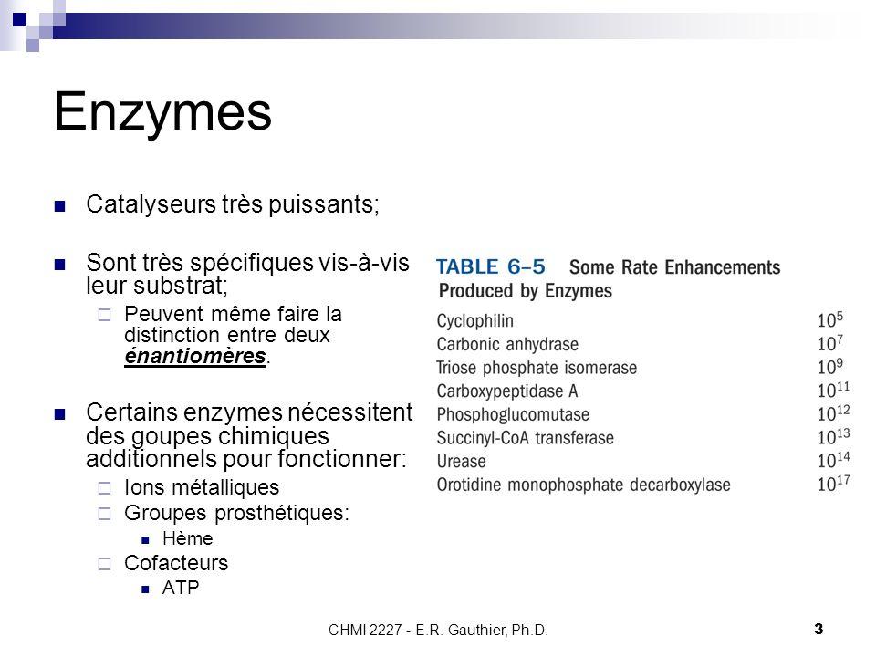 Enzymes Catalyseurs très puissants;