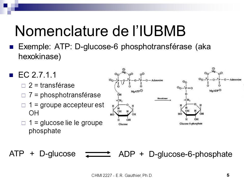 Nomenclature de l'IUBMB