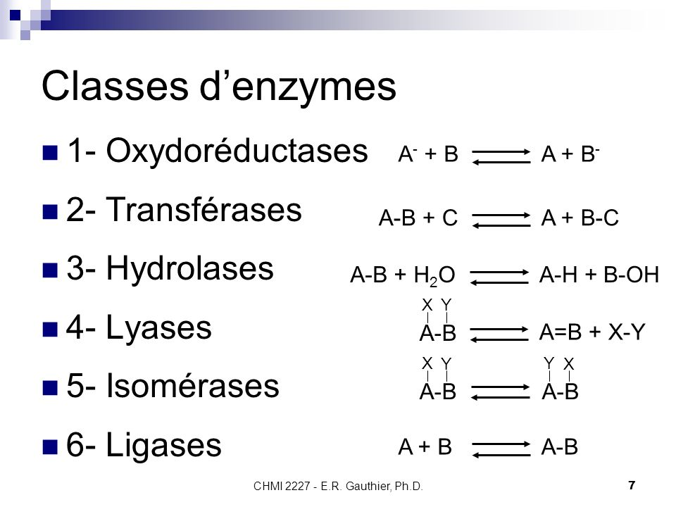 Classes d'enzymes 1- Oxydoréductases 2- Transférases 3- Hydrolases