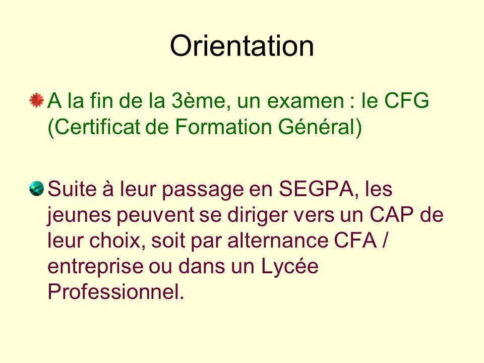 Orientation A la fin de la 3ème, un examen : le CFG (Certificat de Formation Général)