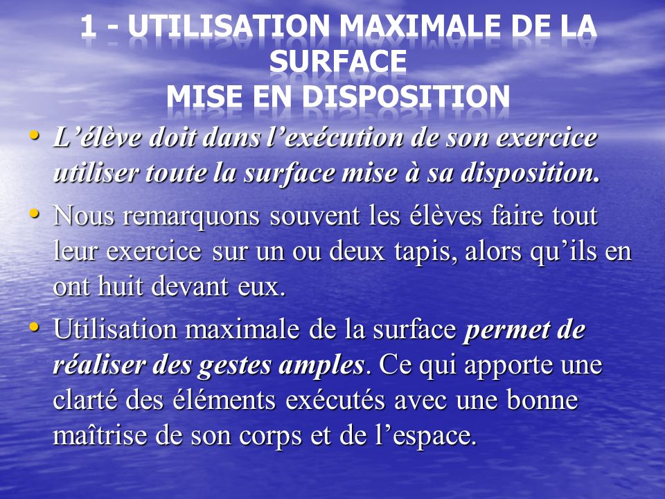 1 - Utilisation maximale de la surface mise en disposition