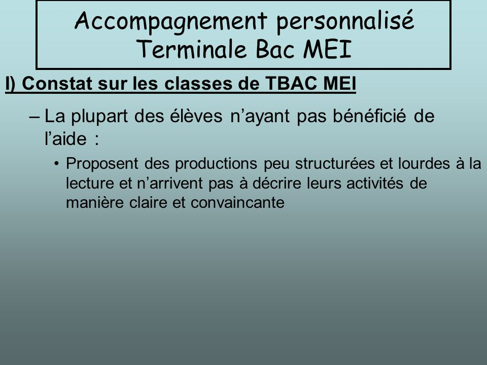 Accompagnement personnalisé Terminale Bac MEI
