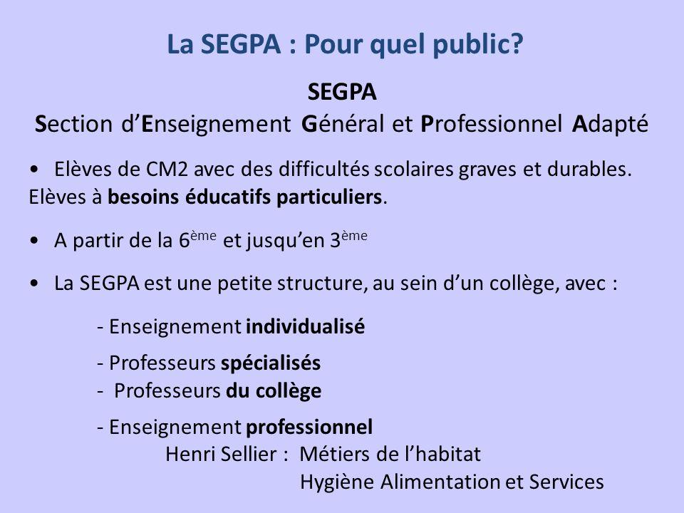 La SEGPA : Pour quel public