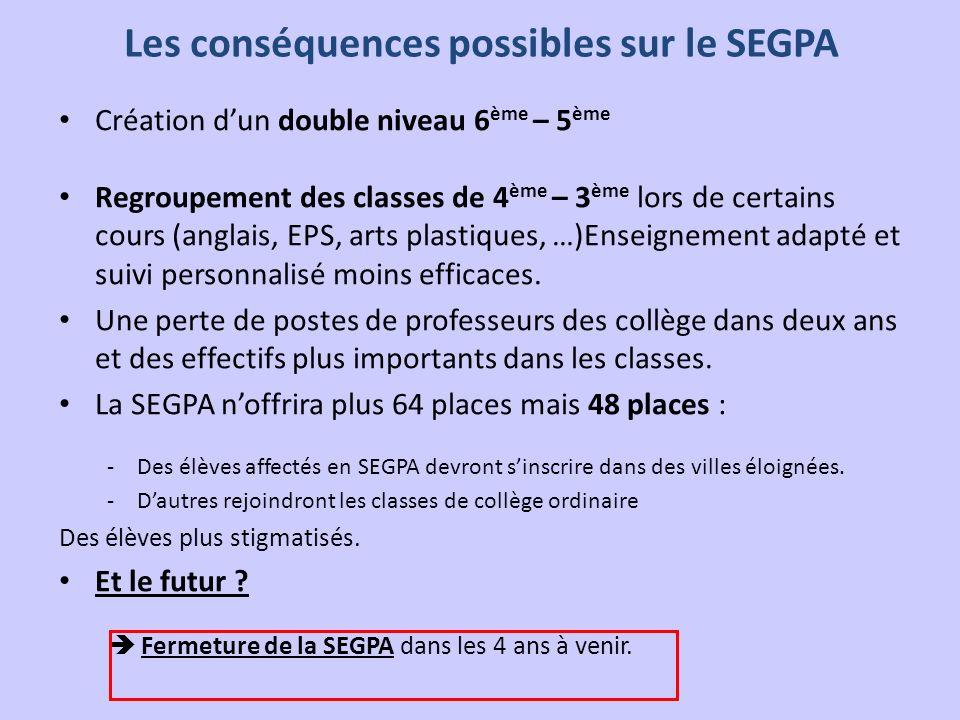 Les conséquences possibles sur le SEGPA