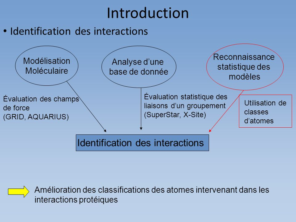 Identification des interactions