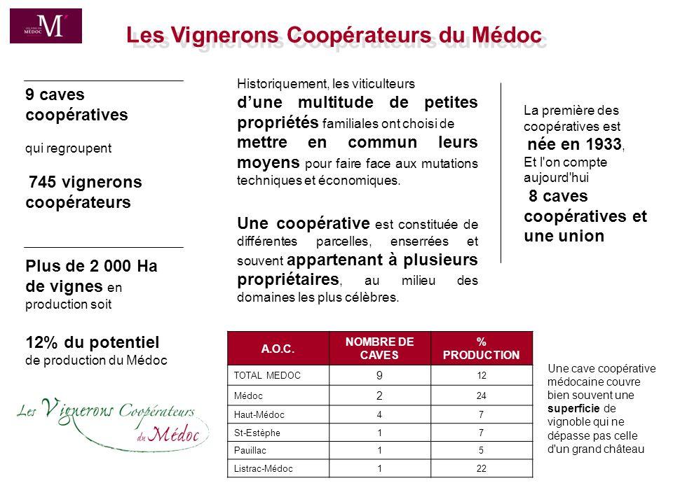 Les Vignerons Coopérateurs du Médoc
